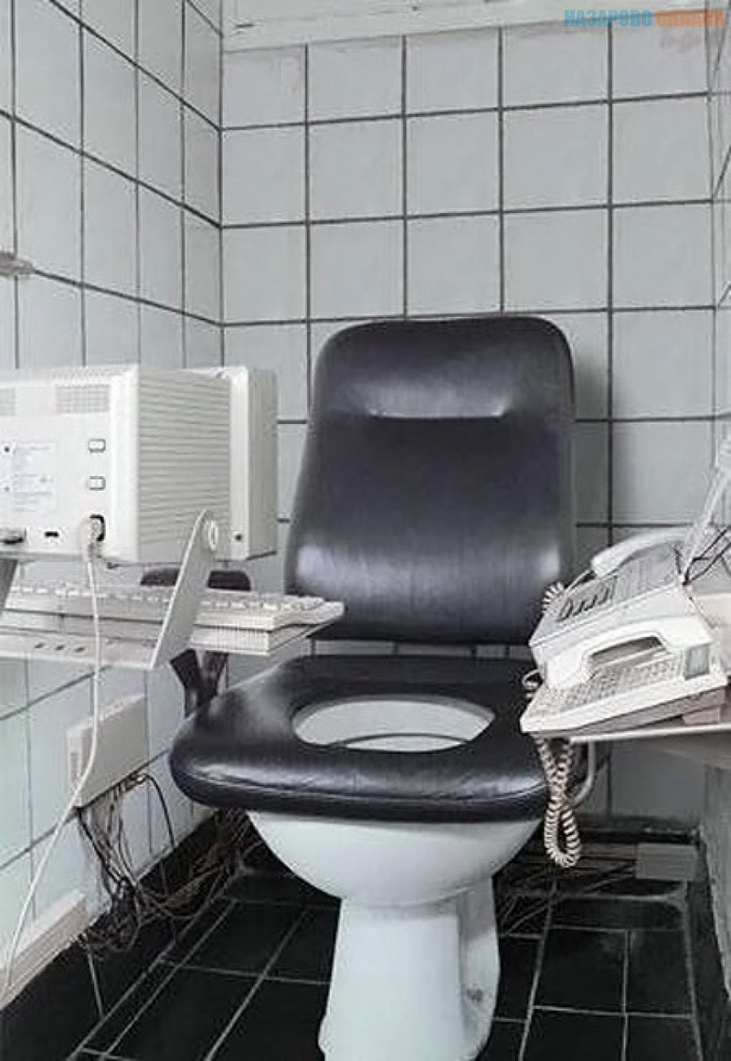 1448350551_tualety-neobychnye-strannye-dizayn-krasivyy-dizayn-gadzhety_7966147135.jpg